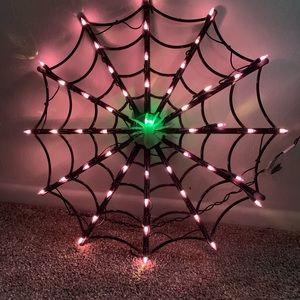 """Spider web 16"""""""